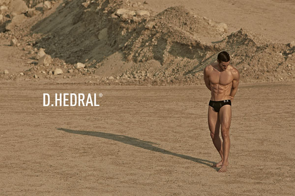 Thom-Evans_D.HEDRAL-SS13_03