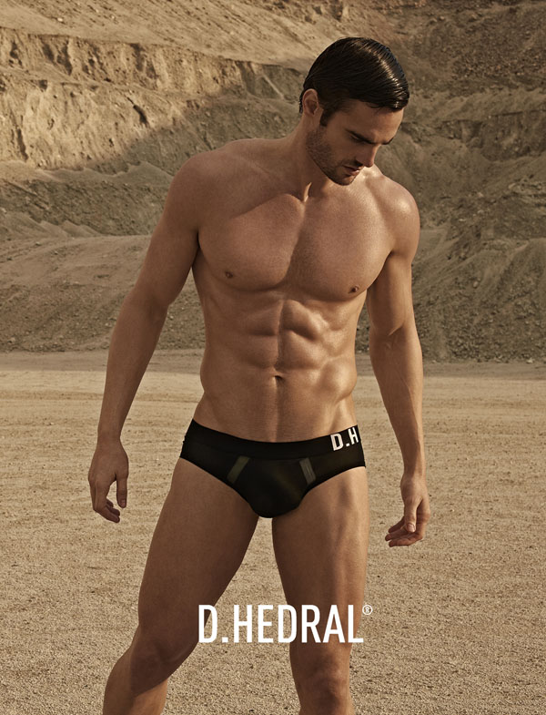 Thom-Evans_D.HEDRAL-SS13_04